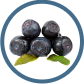 image  blueberries North Carolina Blueberry Council
