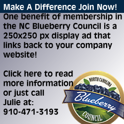 Join the North Carolina Blueberry Council Call 910-471-3193