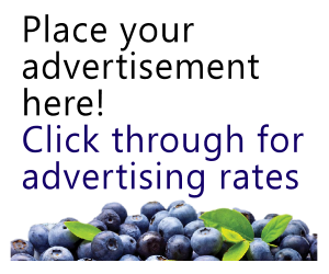 Your Ad Here - Ad Rate Link